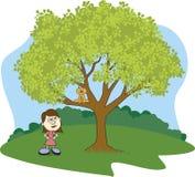 Gatto su un albero Fotografia Stock