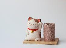 gatto su un supporto di legno sotto le matite fotografie stock