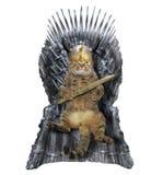 Gatto sul trono del ferro fotografia stock