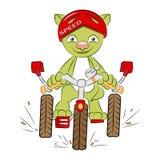 Gatto sulla bici royalty illustrazione gratis