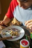 Gatto sveglio che elemosina alimento da un uomo fotografia stock libera da diritti