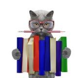 Gatto sveglio che tiene una grande pila di libri -- su bianco Immagini Stock Libere da Diritti