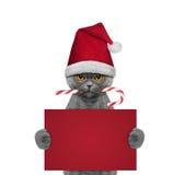 Gatto sveglio con la caramella di natale che tiene una carta con spazio per testo Fotografie Stock