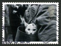 Gatto in un francobollo BRITANNICO della borsa Fotografie Stock