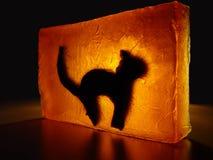 Gatto - vetro macchiato #3 Fotografie Stock Libere da Diritti