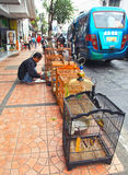 Gatuförsäljare i den Bandung staden Royaltyfri Foto