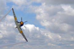 Gatuförsäljare Sea Fury 124 royaltyfri foto