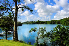 Gatun Lake Stock Images