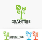 Gatunku loga drzewny wektorowy projekt Fotografia Royalty Free