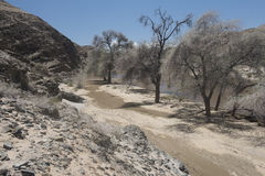 Gaub River - Namibia royalty free stock images