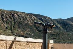 Gauche aiguë de portée de visionnement vers la chaîne de montagne Photo libre de droits