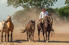 Gaucho fotografie stock