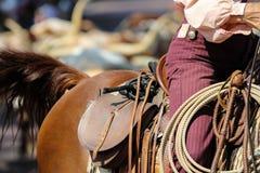 Gaucho en un caballo imagenes de archivo
