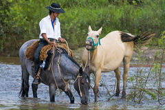Gaucho festival Stock Photo