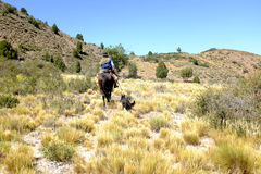 Gaucho horseriding in patagonia Royalty Free Stock Image