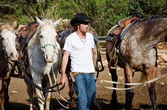 Gaucho with Horses Royalty Free Stock Image