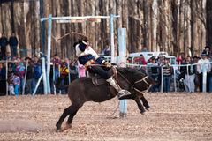 A Gaucho showing his rodeo skills Stock Image