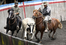 Gauchos - Puerto Montt - Chile Royalty Free Stock Photo