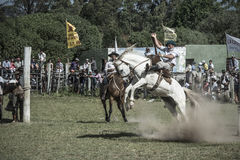 Gauchos rodeo Royalty Free Stock Photography