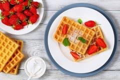 Gaufres belges avec des fraises Photo stock