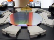 Gaufrette de silicone dans un plateau Photo libre de droits