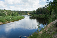 Gauja flod Royaltyfri Bild