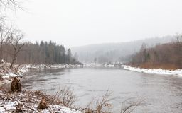 Gauja River near Sigulda, Latvia. A winter view of the Gauja River near Sigulda, Latvia. Sigulda is a part of the Gauja National Park Royalty Free Stock Photos