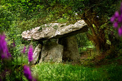 Gaulstown Portal Tomb in Ireland Stock Images