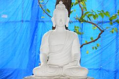 Gautam Buddha meditation stock photo