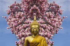 Gautama Buddha source of great Asian religion. Buddhism and dharma that encompasses a variety of traditions, beliefs and spiritual practices largely based on Royalty Free Stock Photos