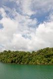 Gautun lake and jungle Royalty Free Stock Image