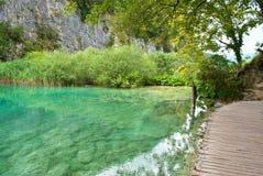 Gavanovac湖透明绿松石水  免版税库存照片