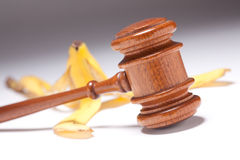 Gavel and Banana Peel on Gradated Background Royalty Free Stock Photography