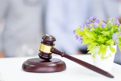 Gavel and dry flower on table. A hammer for judges to judge the stock photos