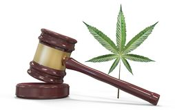 Gavel and marijuana isolated on white. Law and judiciary concept. 3d illustration and rendering image Royalty Free Stock Photo