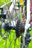 Gaveta de competência traseira da bicicleta Imagem de Stock