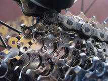 Gaveta traseira de Mountainbike Imagem de Stock