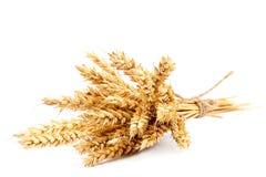 Gavilla de oídos del trigo en el fondo blanco Fotos de archivo
