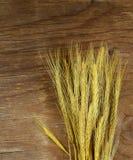 Gavilla de oídos del trigo Fotos de archivo libres de regalías