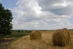 Gavillas de heno en los campos Imagenes de archivo