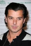 Gavin Rossdale. At Global Green USA's 6th Annual Pre-Oscar Party. Avalon Hollywood, Hollywood, CA. 02-19-09 Royalty Free Stock Photography