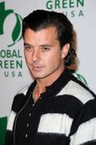 Gavin Rossdale Royalty Free Stock Photography