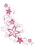 Gavinha floral, sumário, flores ilustração royalty free