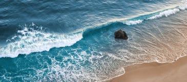 gaviota海浪 免版税库存照片