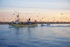 Gaviota del barco de pesca en salida del sol de la puesta del sol Fotos de archivo