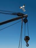 Gaviota del cabo que toma vuelo Fotos de archivo