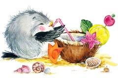 Gaviota del pájaro de mar Fondo divertido marino Ilustración de la acuarela Foto de archivo libre de regalías