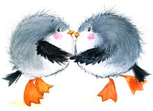 Gaviota del pájaro de mar Fondo divertido marino Ilustración de la acuarela Imagen de archivo