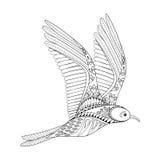 Gaviota del vector Ejemplo común de la gaviota de Zentangle, pájaro de vuelo stock de ilustración