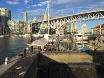 Gaviota en Vancouver fotografía de archivo